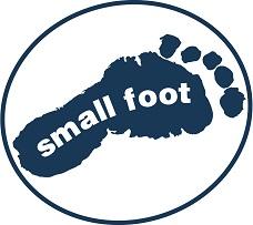 small_foot_by_legler_m.jpg